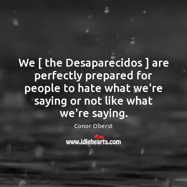 We [ the Desaparecidos ] are perfectly prepared for people to hate what we're Image