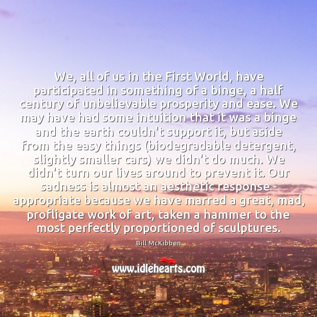 We, all of us in the First World, have participated in something Bill McKibben Picture Quote