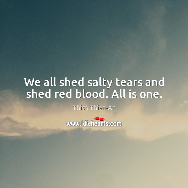 We all shed salty tears and shed red blood. All is one. Image