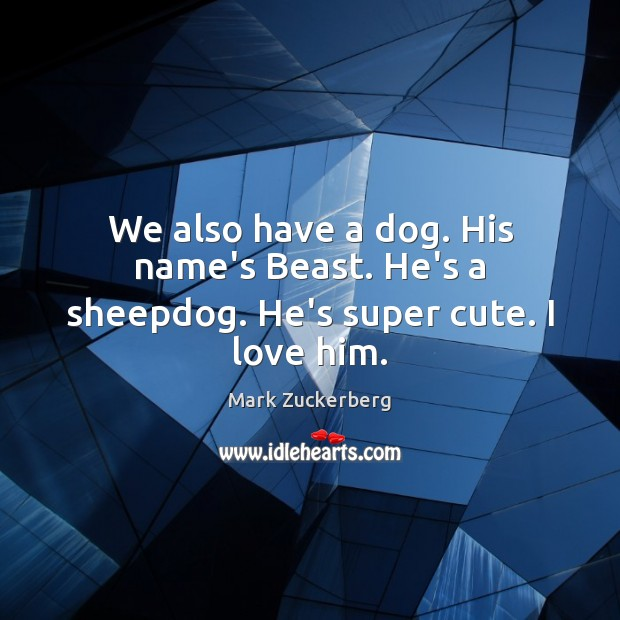 Image, We also have a dog. His name's Beast. He's a sheepdog. He's super cute. I love him.