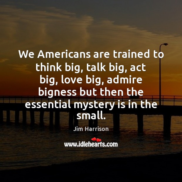 We Americans are trained to think big, talk big, act big, love Jim Harrison Picture Quote