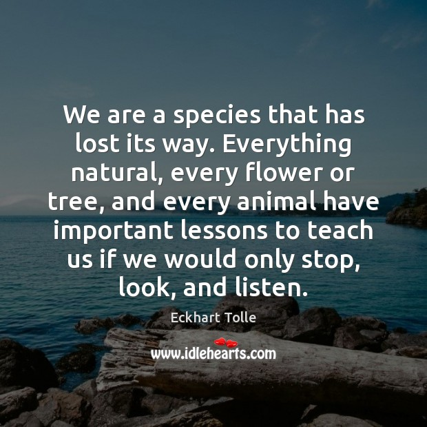 We are a species that has lost its way. Everything natural, every Image