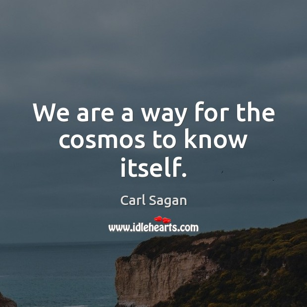 Image, We are a way for the cosmos to know itself.