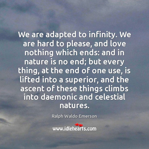 We are adapted to infinity. We are hard to please, and love Image