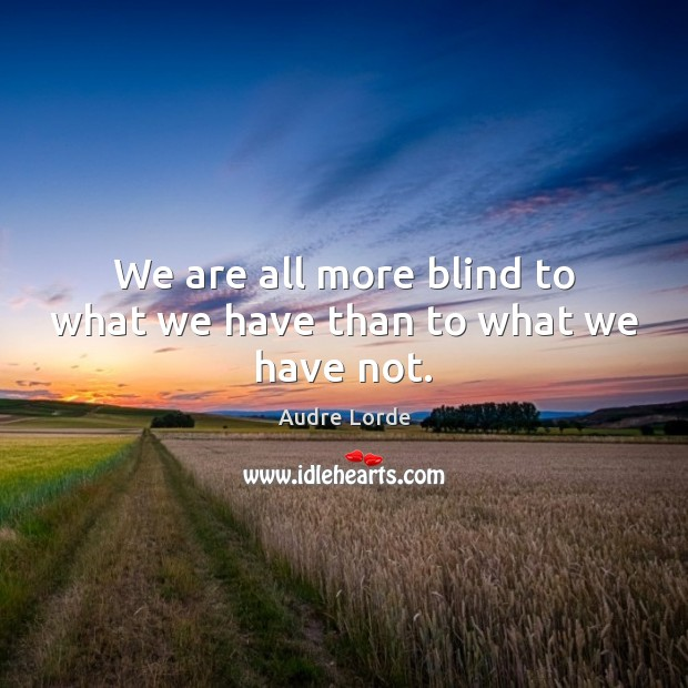 We are all more blind to what we have than to what we have not. Audre Lorde Picture Quote