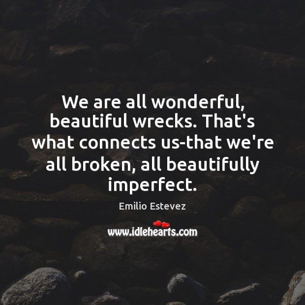 We are all wonderful, beautiful wrecks. That's what connects us-that we're all Image