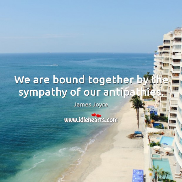 We are bound together by the sympathy of our antipathies. James Joyce Picture Quote