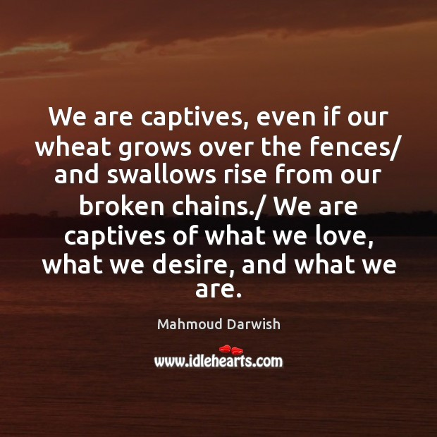 Image, We are captives, even if our wheat grows over the fences/ and