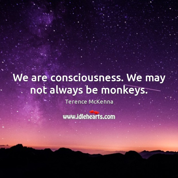 We are consciousness. We may not always be monkeys. Image