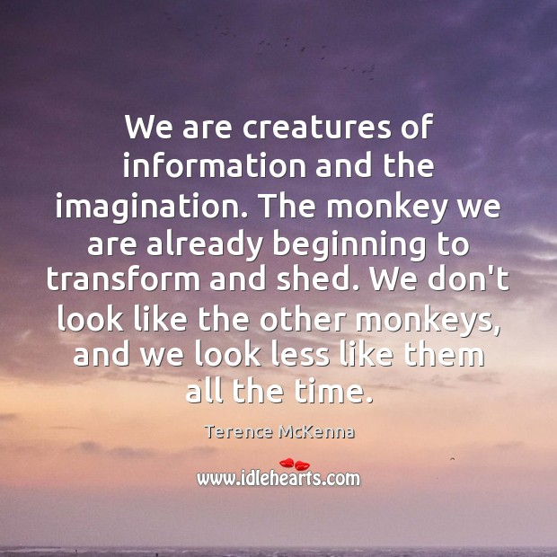 Image, We are creatures of information and the imagination. The monkey we are