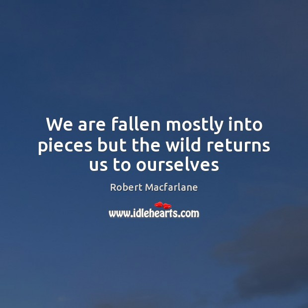 We are fallen mostly into pieces but the wild returns us to ourselves Robert Macfarlane Picture Quote