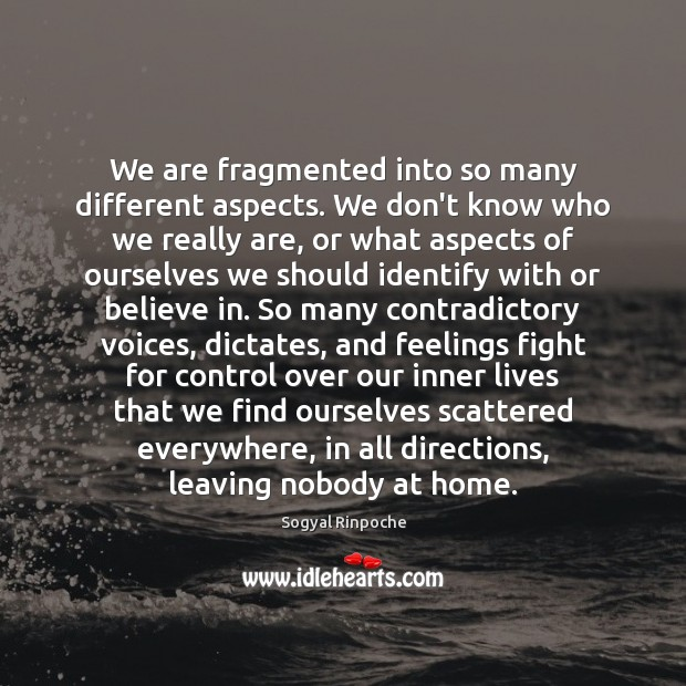 We are fragmented into so many different aspects. We don't know who Sogyal Rinpoche Picture Quote