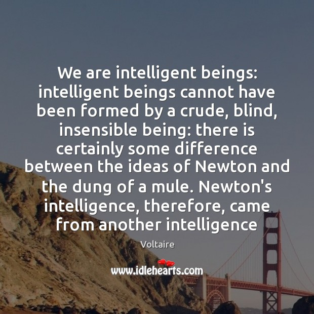 Image, We are intelligent beings: intelligent beings cannot have been formed by a
