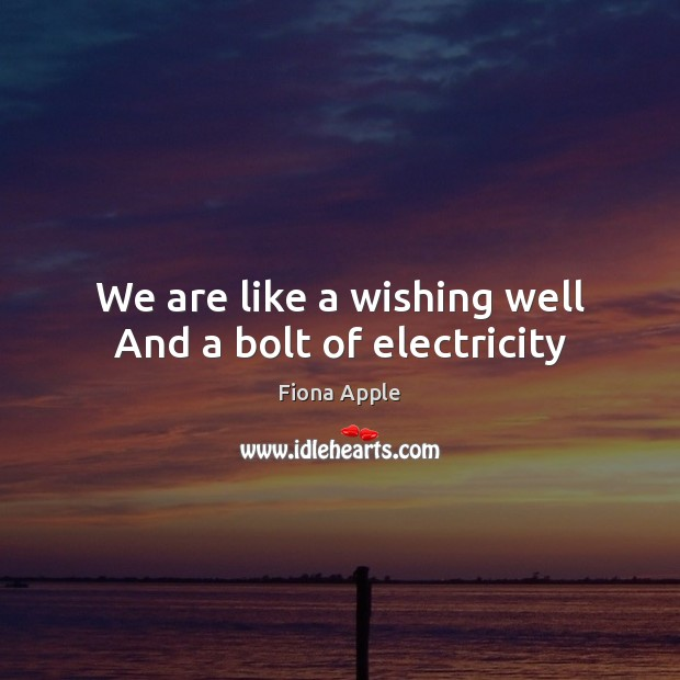 We are like a wishing well And a bolt of electricity Fiona Apple Picture Quote