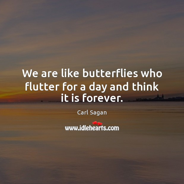 Image, We are like butterflies who flutter for a day and think it is forever.