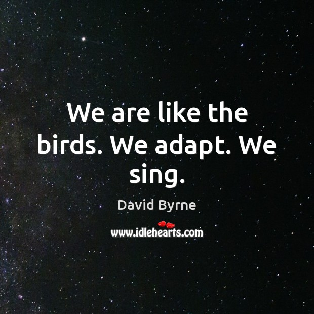 We are like the birds. We adapt. We sing. David Byrne Picture Quote