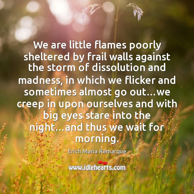 We are little flames poorly sheltered by frail walls against the storm Erich Maria Remarque Picture Quote