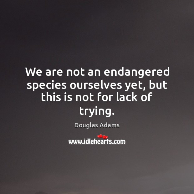 We are not an endangered species ourselves yet, but this is not for lack of trying. Image