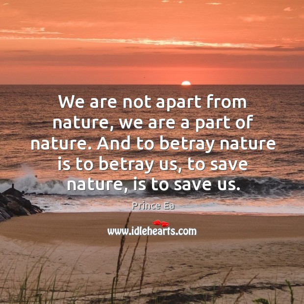 We are not apart from nature, we are a part of nature. Image