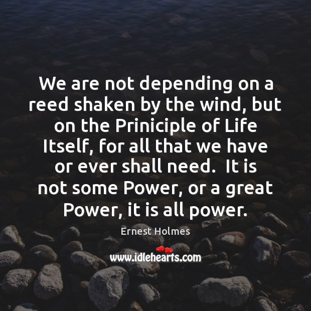 Image, We are not depending on a reed shaken by the wind, but