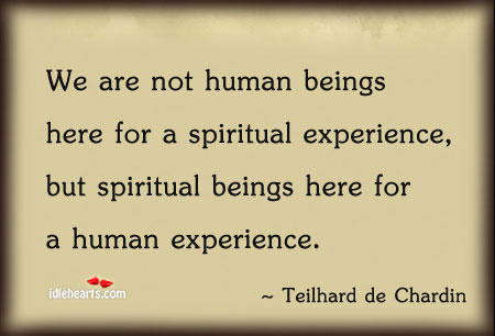 We Are Not Human Beings Here For A Spiritual…
