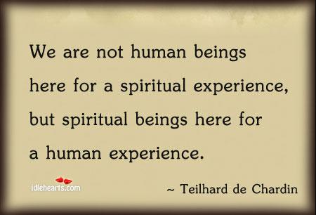 we-are-not-human-beings.jpg