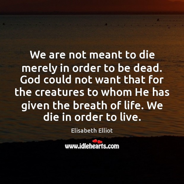We are not meant to die merely in order to be dead. Image