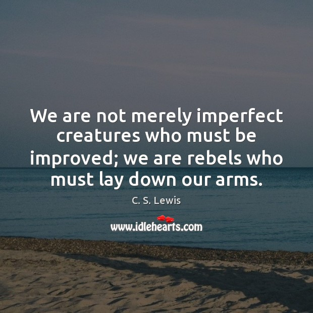 We are not merely imperfect creatures who must be improved; we are Image