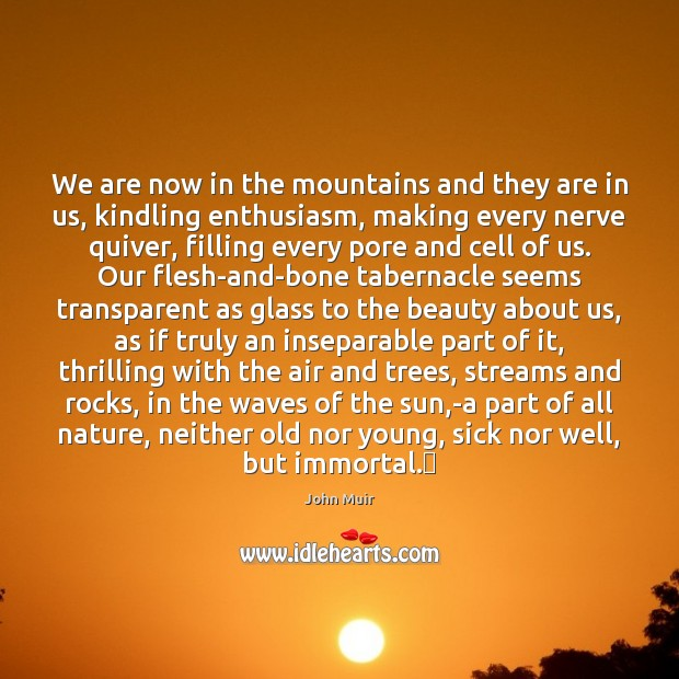 We are now in the mountains and they are in us, kindling Image