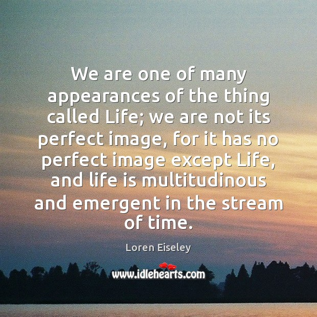 We are one of many appearances of the thing called Life; we Loren Eiseley Picture Quote