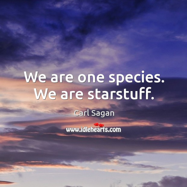 We are one species. We are starstuff. Image