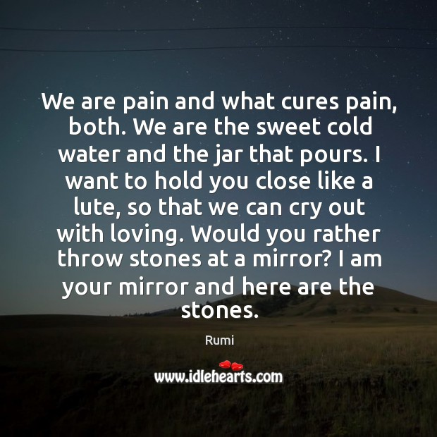 We are pain and what cures pain, both. We are the sweet Image