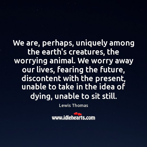We are, perhaps, uniquely among the earth's creatures, the worrying animal. We Image