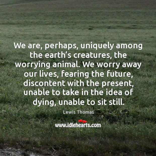 We are, perhaps, uniquely among the earth's creatures, the worrying animal. Image