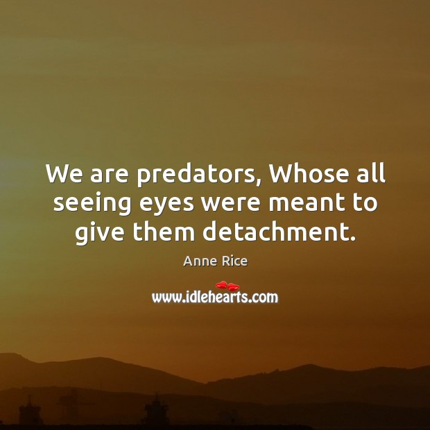 We are predators, Whose all seeing eyes were meant to give them detachment. Image