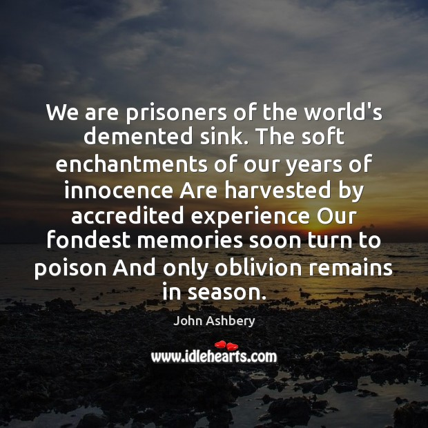 We are prisoners of the world's demented sink. The soft enchantments of Image
