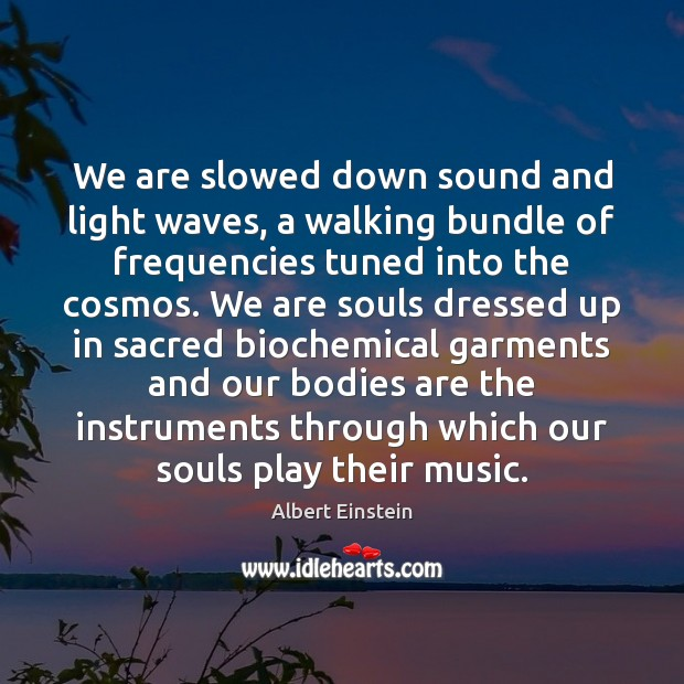 Image, We are slowed down sound and light waves, a walking bundle of