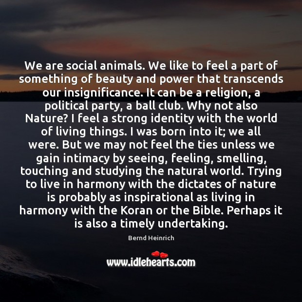 Image, We are social animals. We like to feel a part of something
