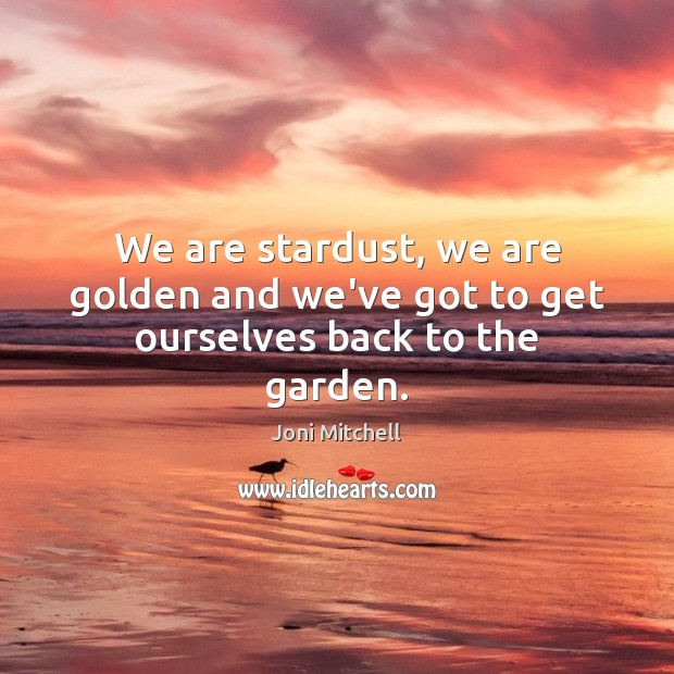 We are stardust, we are golden and we've got to get ourselves back to the garden. Image