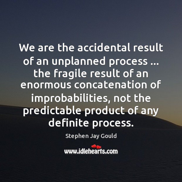 We are the accidental result of an unplanned process … the fragile result Stephen Jay Gould Picture Quote