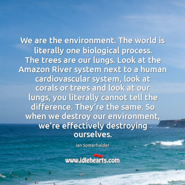 We are the environment. The world is literally one biological process. The Image