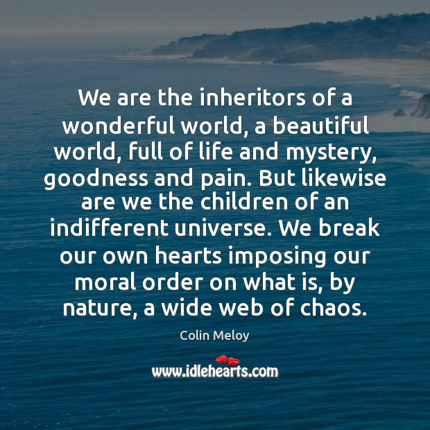 We are the inheritors of a wonderful world, a beautiful world, full Colin Meloy Picture Quote