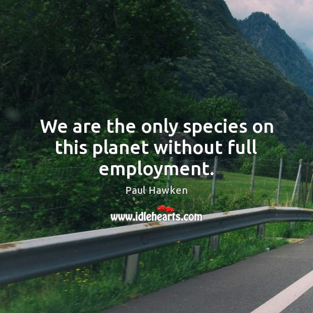 We are the only species on this planet without full employment. Paul Hawken Picture Quote