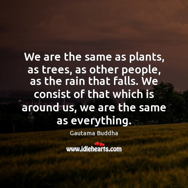 We are the same as plants, as trees, as other people, as Image