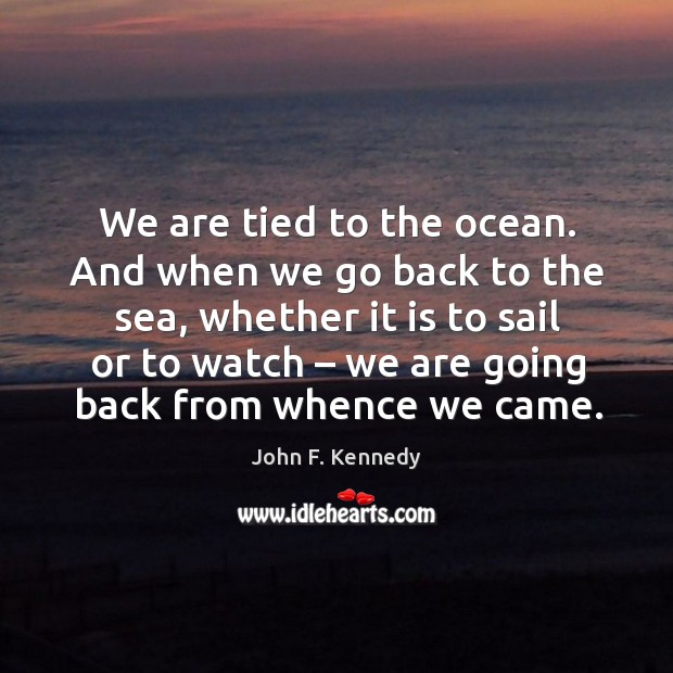 Image, We are tied to the ocean. And when we go back to the sea