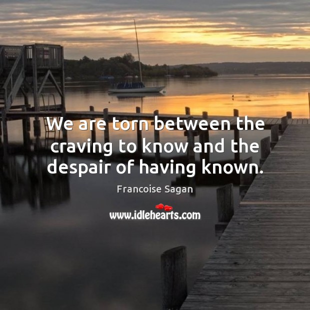 We are torn between the craving to know and the despair of having known. Francoise Sagan Picture Quote