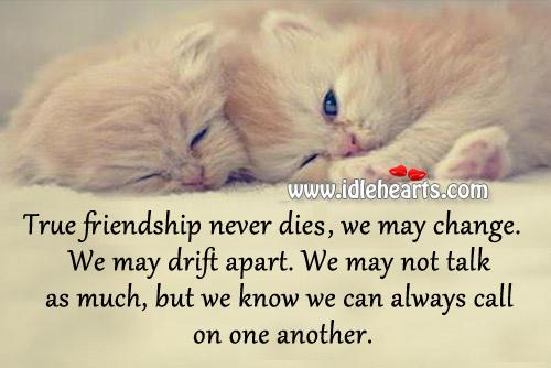 True friendship never dies. Image
