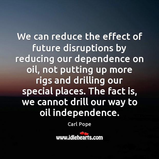 Image, We can reduce the effect of future disruptions by reducing our dependence