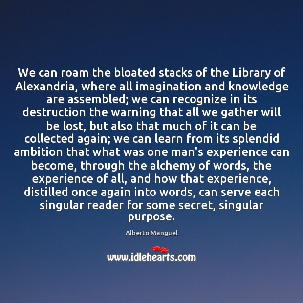 Image, We can roam the bloated stacks of the Library of Alexandria, where