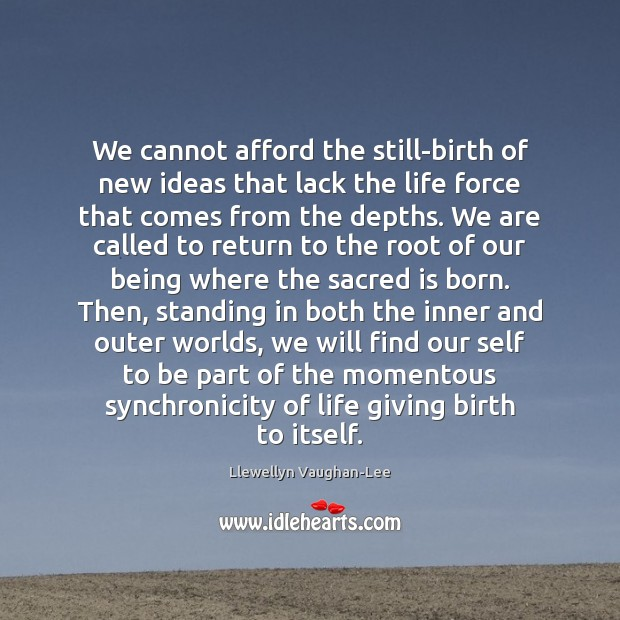 We cannot afford the still-birth of new ideas that lack the life Llewellyn Vaughan-Lee Picture Quote